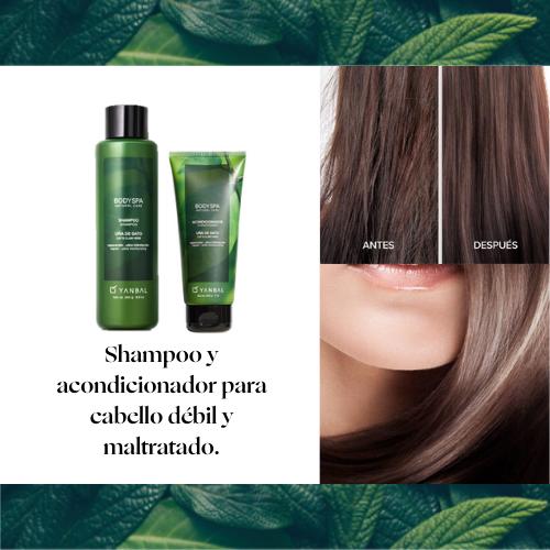 Shampoo y Acondicionador Body SPA Uña de Gato